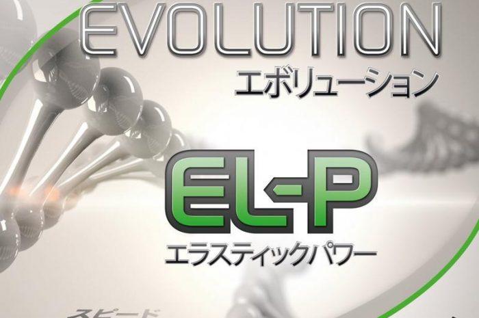 Tibhar Evolution EL-P – Erfahrungsbericht