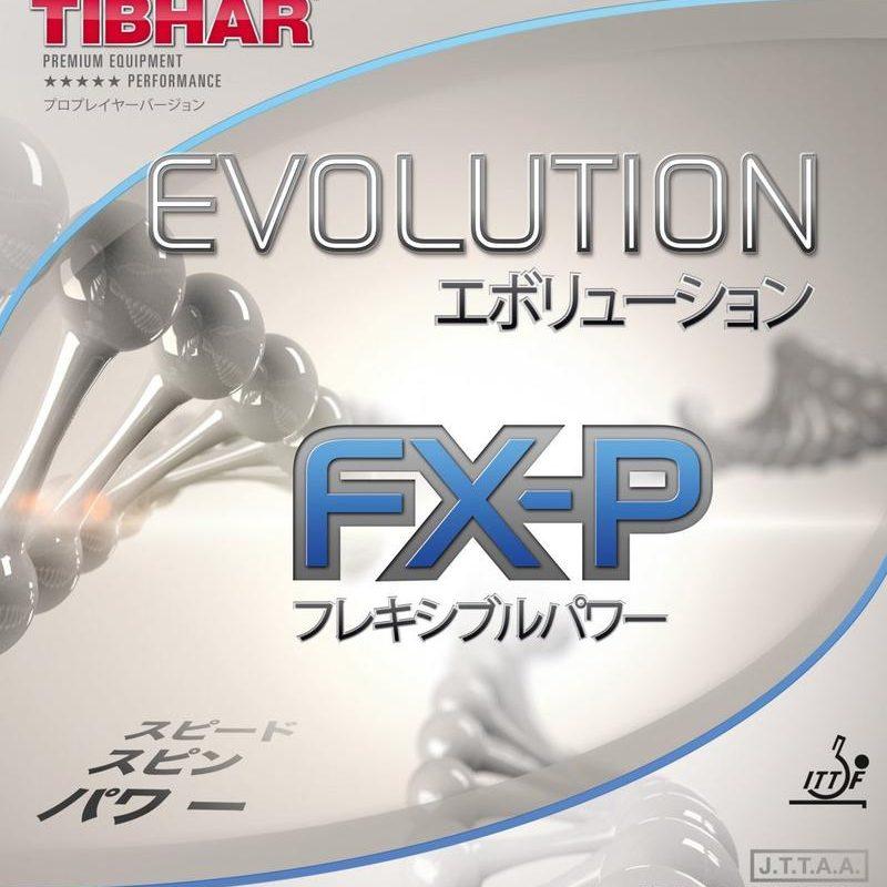 Das Einspielen – erste Eindruck des Tibhar Evolution FX-P